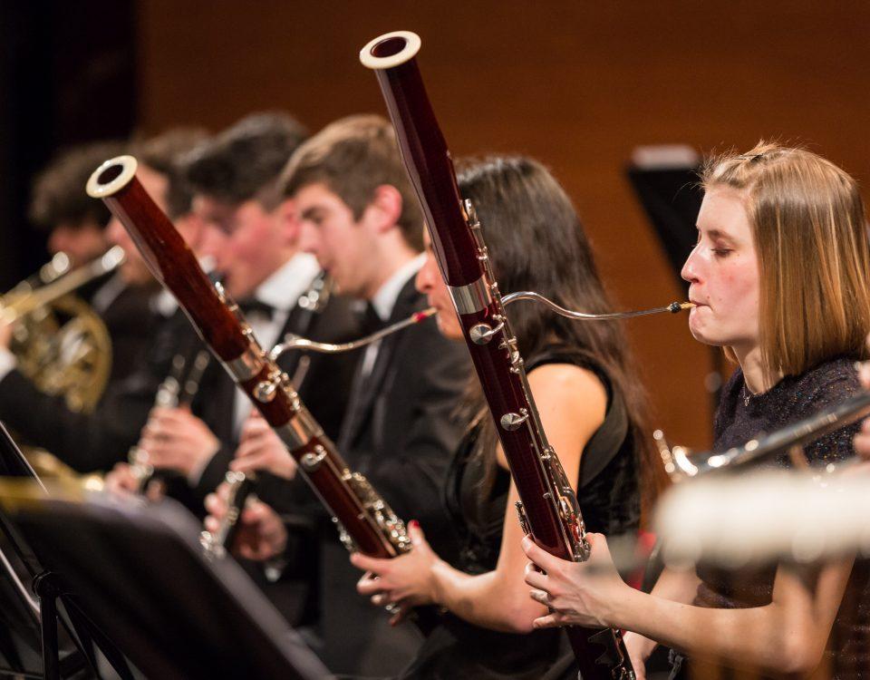 foto_orchestra_18